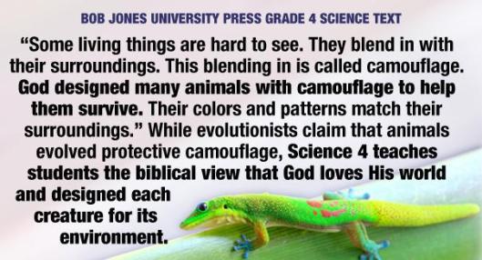 05-creationism021_605[1]