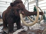 1396494470000-040114wooly-mammoth[1]