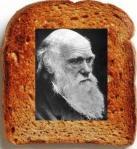 toast-3[1]