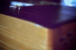 ring-bible[1]