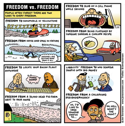 freedomvfreedom720[1]