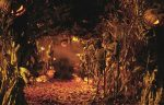 Symbols-of-Samhain-and-Halloween[1]